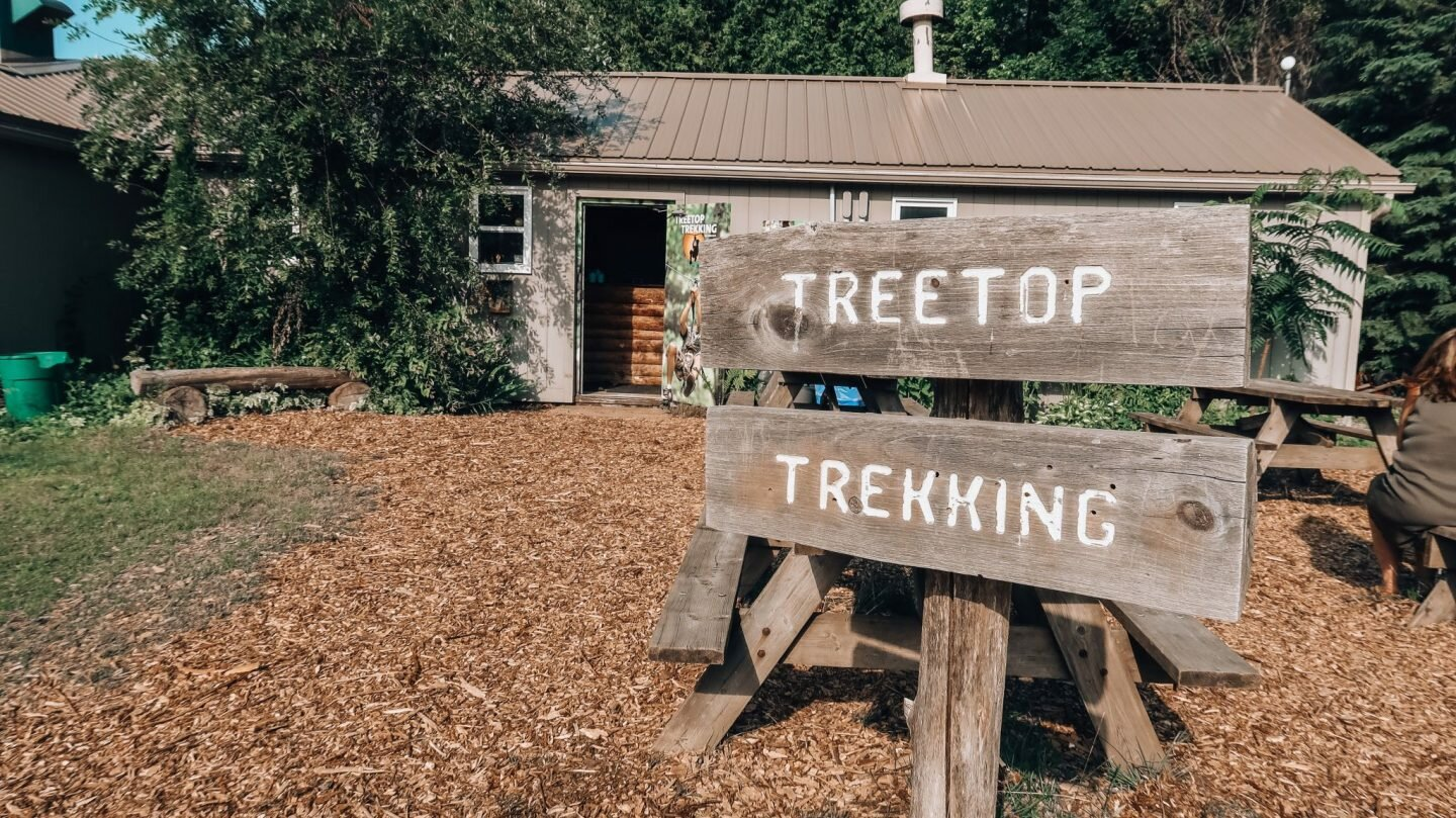 Ontario: Beginner's Guide to Treetop Trekking in Port Hope